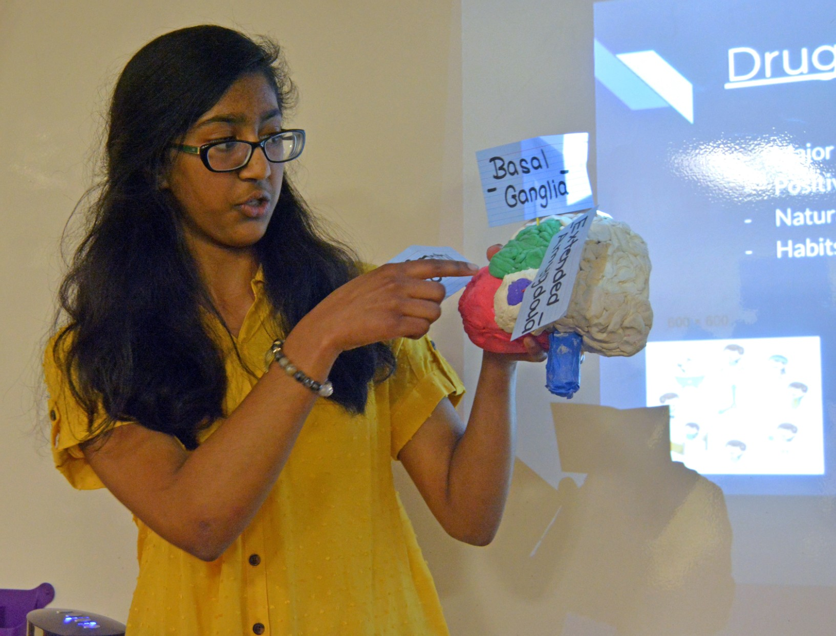 Eighth graders captivate audience on Capstone Night